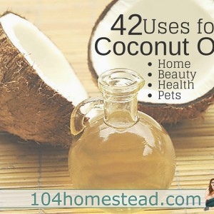 42 Fabulous Uses for Coconut Oil