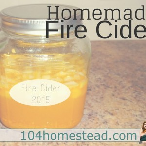 Homemade Fire Cider