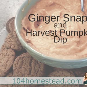 Homemade Ginger Snaps & Harvest Pumpkin Dip