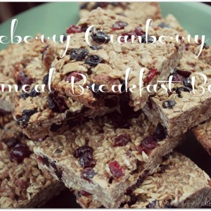 Blueberry Cranberry Oatmeal Breakfast Bars