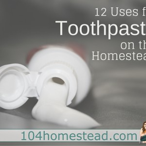 12 Uses for Toothpaste Around the Homestead
