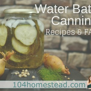Water Bath Canning FAQs & Recipes