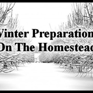 Winter Preparations On The Homestead