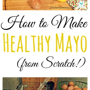 How to Make (Healthy) Mayonnaise from Scratch