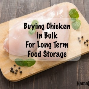 Buying Chicken in Bulk