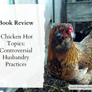 Chicken Hot Topics Book Review