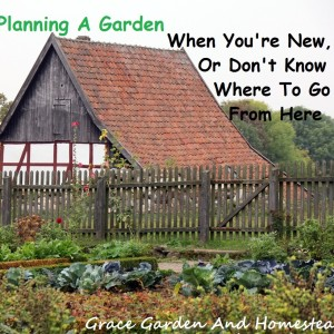 Garden Planning For Beginners And Intermediates
