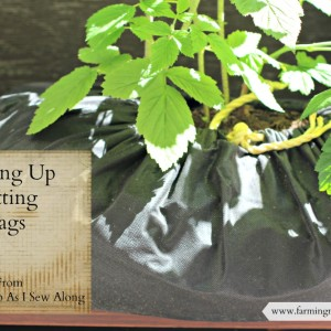 Making Up Potting Bags