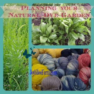 Planning your Natural Dye Garden
