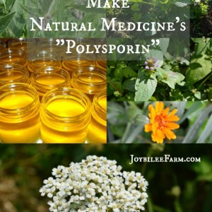 "Make Natural Medicine's ""Polysporin"""