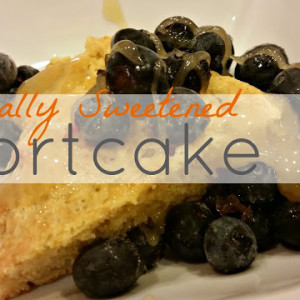Naturally Sweetened Shortcake