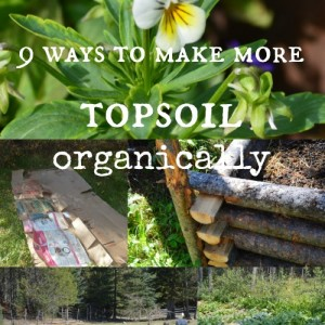 9 ways to make more topsoil organically