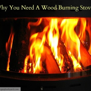 Why You Need A Wood Burning Stove
