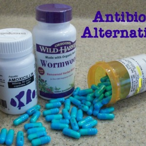 Antibiotic Alternatives