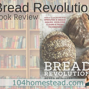 Welcome to The Bread Revolution