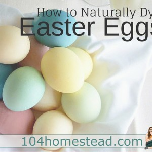 How to Dye Easter Eggs Using Natural Ingredients