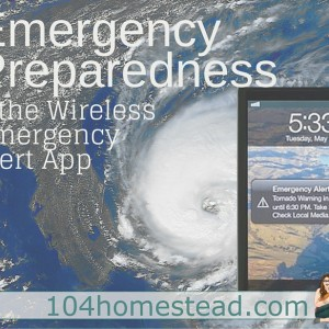 Emergency Preparedness & The Wireless Emergency Alert App