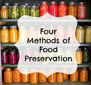 4 Methods of Food Preservation