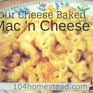 4 Cheese Baked Macaroni