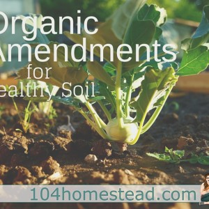 Organic Amendments – Eating pure and natural.