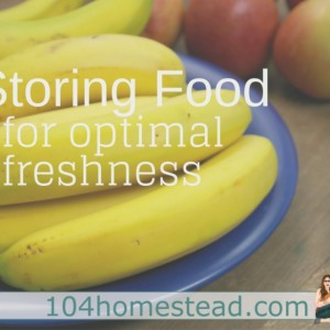 How to Store Common Foods for Freshness