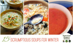 15 Scrumptious Soups for Winter FB