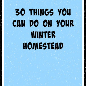 30 Things You Can Do On Your Winter Homestead