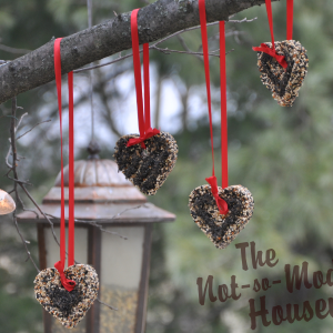 Heart-Shaped Bird Seed Ornaments