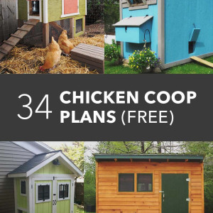 34 Free Chicken Coop Plans & Ideas That You Can Build by Yourself