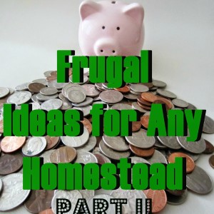 Frugal Ideas for Any Homestead Part II