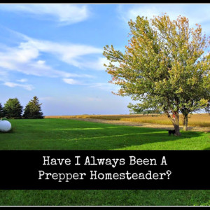 Have I Always Been A Prepper Homesteader?