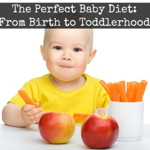 The Perfect Baby Diet