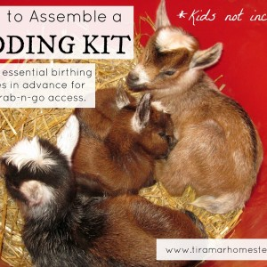 How to Assemble a Goat Birthing Kit