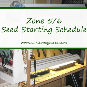 Seed Starting in Zones 5 and 6