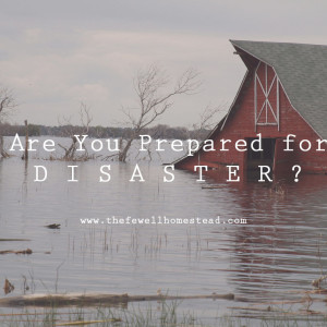 Are You Prepared for Disaster on Your Homestead?