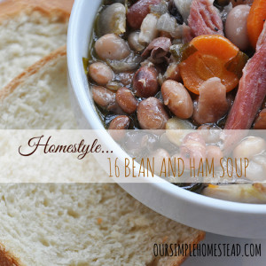 16 Bean and Ham Soup