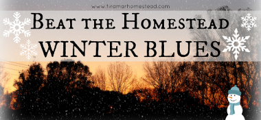 Beat the Homestead Winter Blues