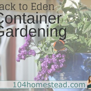 Back to Eden Container Gardening
