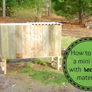 Make a Mini Chicken Coop with Recycled Materials