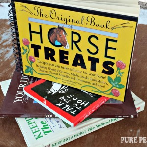 DIY Horse Treats