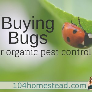 Buying Beneficial Bugs