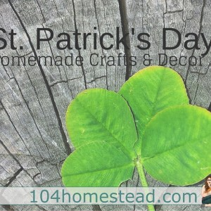 Simple St. Patrick's Day Crafts & Decor