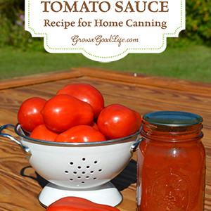 Tomato Sauce Recipe for Home Canning