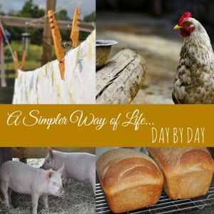 A Simpler Way of Life …Day by Day