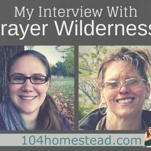 My Interview with Trayer Wilderness