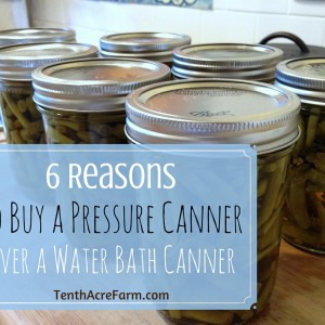6 Reasons to Buy a Pressure Canner