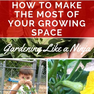 How to Make the Most of your Growing Space