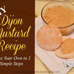 DIY Dijon Mustard- Make Your Own in 2 Simple Steps.