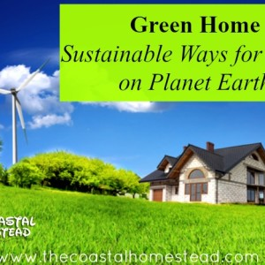 Green Home: Sustainable Ways for Living on Planet Earth