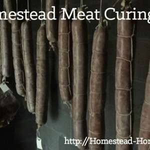 Homestead Meat Curing